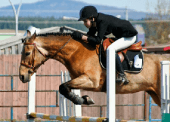 The Prince George Horse Society wants to ensure that it continues to be fiscally sound in operating the expanded facilities. A feasibility study was needed to document additional revenue sources and potential business opportunities, and to estimate future costs of a larger operation.