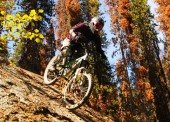 Big drops and technical trails feature throughout this exciting network of mountain biking trails in Smithers.